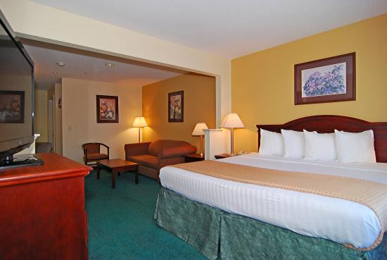 Photo of BEST WESTERN Fountainview Inn & Suites Near Galleria Houston