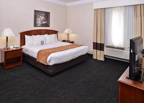 Photo of Comfort Suites Albany