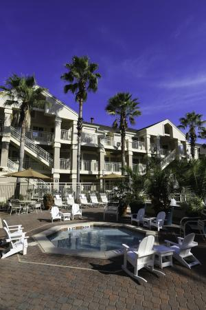Staybridge Suites Lake Buena Vis
