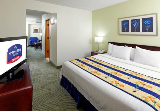 Springhill Suites Houston Medical Center/ NRG Park
