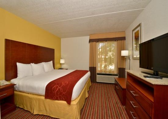 Photo of Comfort Suites At North Point Mall Alpharetta