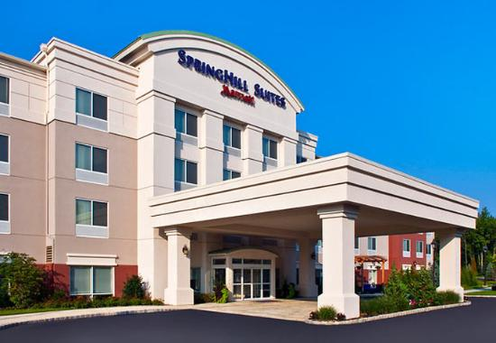 Photo of SpringHill Suites Long Island Brookhaven Bellport
