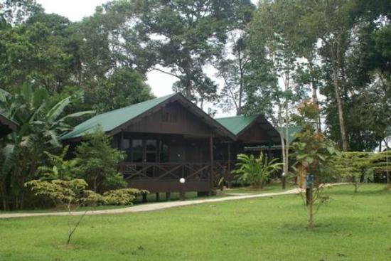 Photo of Proboscis Lodge Bukit Melapi Sandakan