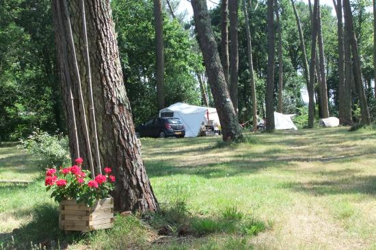 Camping La Teouleyre
