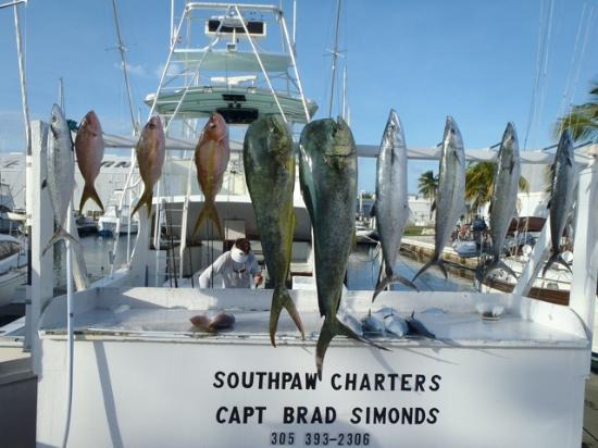 Captain brad 1st mate austin the team that made it for Seven fish key west fl