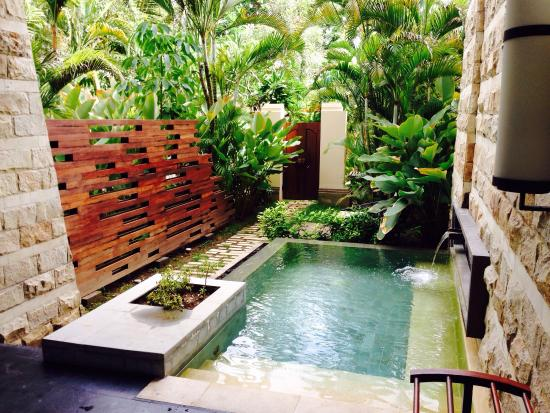 private plunge pool picture of sofitel bali nusa dua beach resort nusa dua tripadvisor. Black Bedroom Furniture Sets. Home Design Ideas