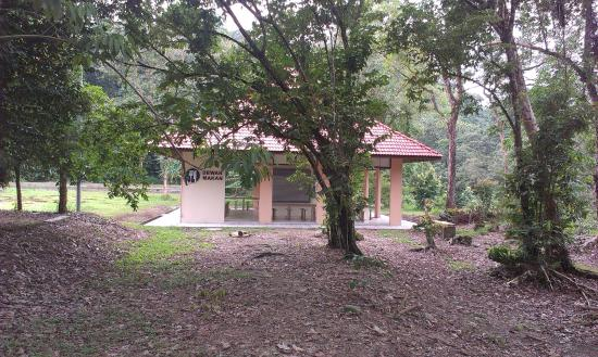 Kuala Woh Recreational Forest