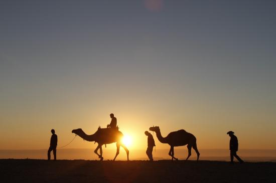 Atlas Desert Expeditions - Day Tours