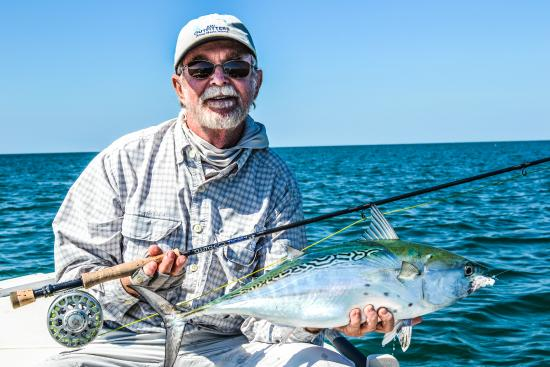 Tampa bay fly fishing charter picture of reel aggressive for Tampa fly fishing
