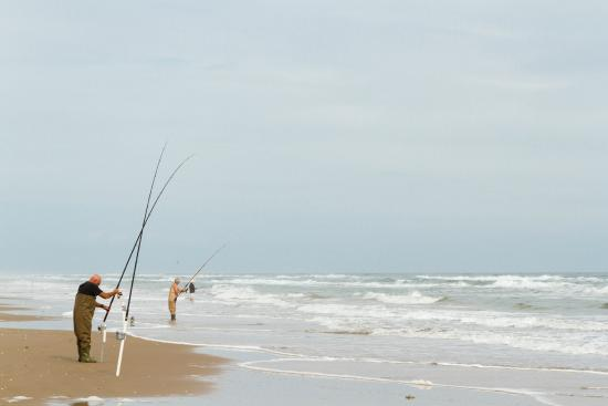 South padre island sandcastle days picture of for South padre island fishing