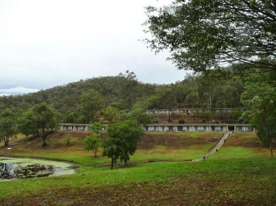 Some Of The Rainforest Surrounded Apartments At Cedar Lake