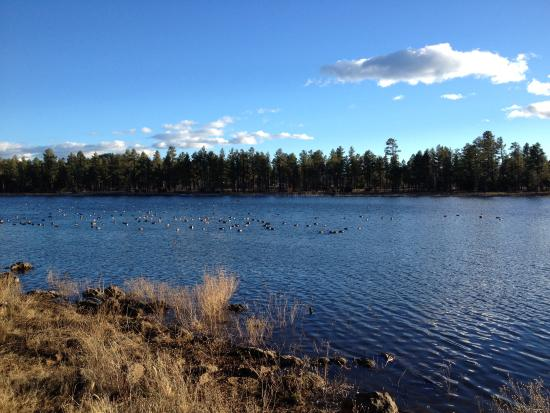 Pinetop-Lakeside