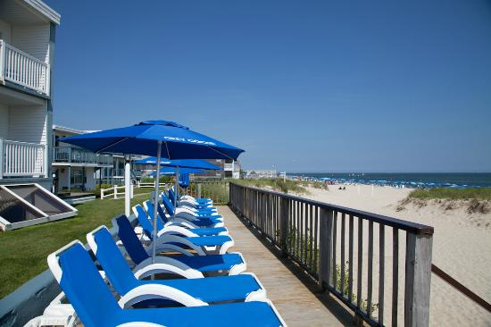 Star Hotels In Cape Cod