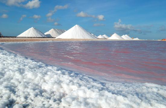 Bonaire, the only Caribbean island with salt mountains like snow