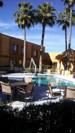 BEST WESTERN Green Valley Inn: View of pool area from ground floor room