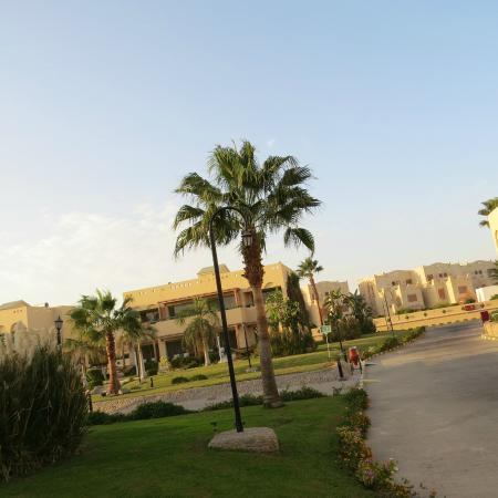The Palace Port Ghalib: Road to the Hotel