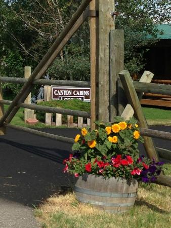Photo of Canyon Cabins Lodging Gallatin Gateway