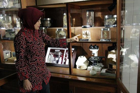 Indonesian Cancer Museum