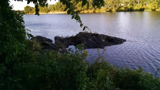 Milford, ME: Guest photo- taken on property