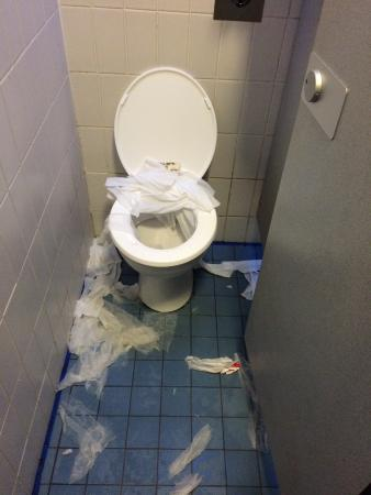 North Shields, UK: Toilet at wet n wild.....