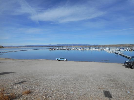 South marina and carp fishing area picture of lake for Pueblo reservoir fishing