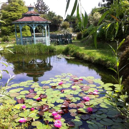 Bennetts Water Gardens Cafe