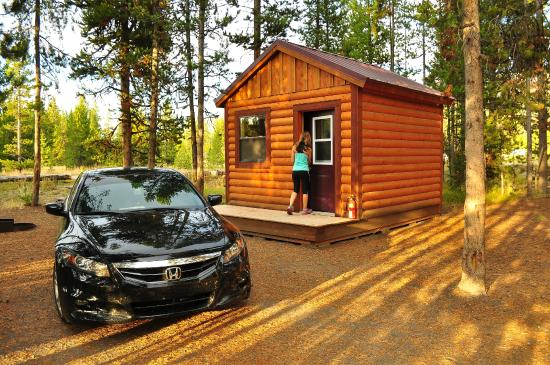 Bed photo de headwaters lodge cabins at flagg ranch for Jackson wyoming alloggio cabine