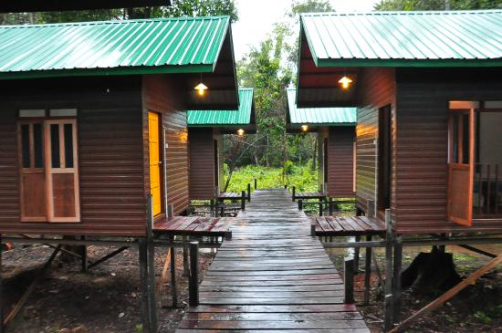 ‪Kinabatangan Sunshine Lodge‬