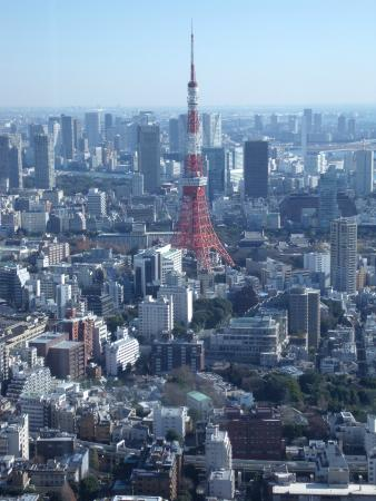 Tokyo City View - Picture of Tokyo City View Observation Deck (Roppongihills)...