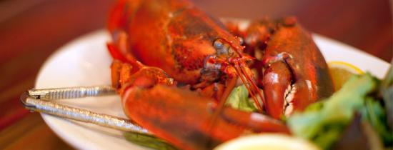 Lobster Tail, Windham - Menu, Prices & Restaurant Reviews - TripAdvisor