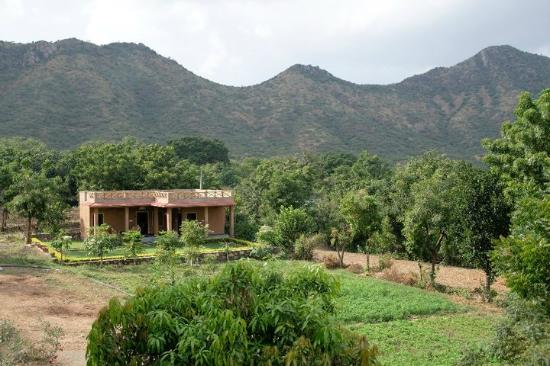 Krishna Ranch