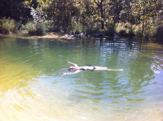 Spicewood Springs Swimming Hole Picture Of Colorado Bend