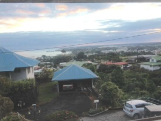 Hilltop Legacy: view of Hilo