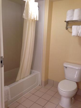 Homewood Suites Dulles - North / Loudoun: Easy to maneuver in bathroom