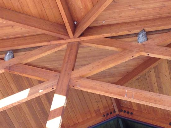 New Mexico Farm and Ranch Heritage Museum: Welcoming Owls