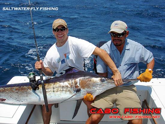 Bottom fishing picture of cabo fishing charters cabo for Los cabos fishing charters