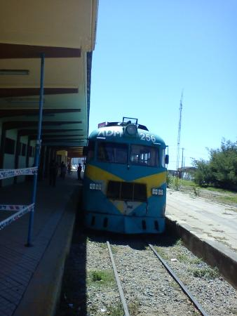 Ramal Talca - Constitucion - Train