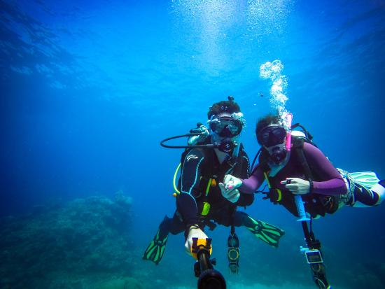 Certified divers picture of pro dive cairns day trips - Pro dive cairns ...