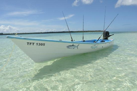 Fish Tobago Tours