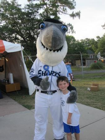 Wilmington Sharks Baseball