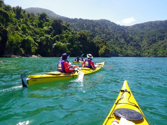 Marlborough Sounds Adventure Company - Day Tours