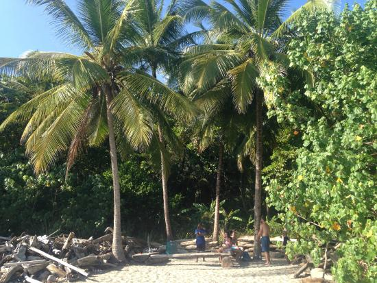 Young Vision Surf School: the beach where Young Vision is located