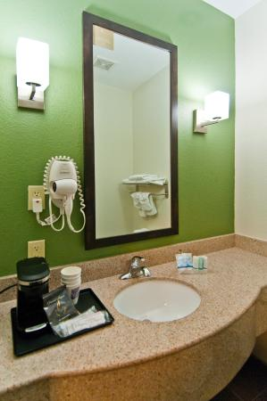 Sleep Inn & Suites Bush Intercontinental Airport IAH East: VANITY