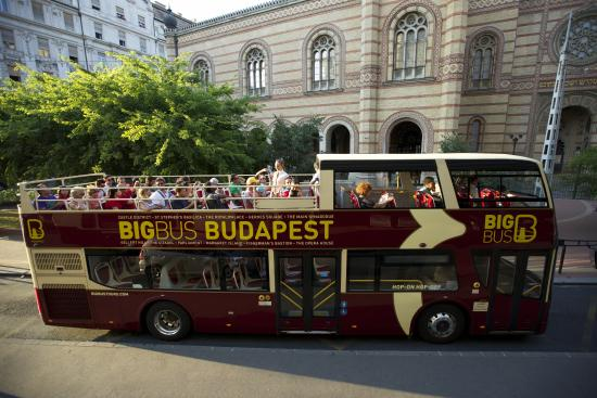 Big Bus Tours Hop-On Hop-Off Sightseeing