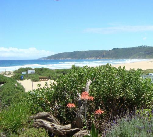 Salinas Beach Restaurant Wilderness South Africa