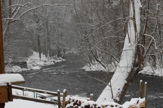 Riverstone Lodge: Walking distance to Little Pigeon River