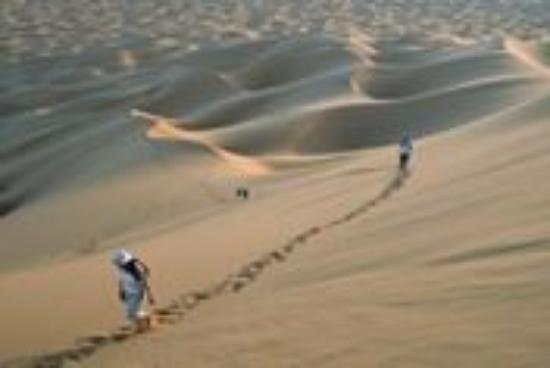 Morocco Camel Trips - Day Trips