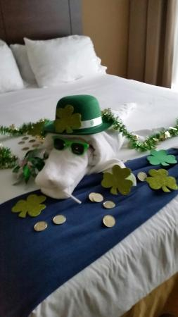 Holiday Inn Express & Suites Fort Myers- The Forum: a funny surprise