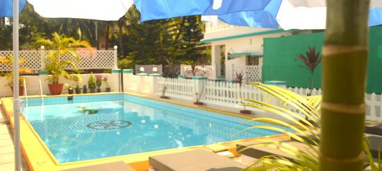 lovely swimming pool - Picture of Maggie's Haven Boutique Guest ...