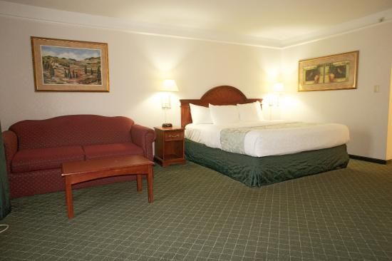 Photo of La Quinta Inn & Suites Detroit Utica